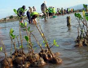 Việt Nam tổ chức Tuần lễ Biển và Hải đảo năm 2014