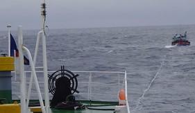 BTL Vùng Cảnh sát biển 2 cứu nạn tàu cá và 10 ngư dân gặp nạn trên biển