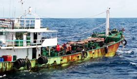 Bộ Tư lệnh Vùng Cảnh sát biển 4 bắt giữ vụ sang mạn dầu trái phép với số lượng lớn
