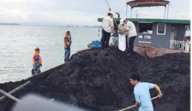 Cụm Trinh sát số 1 bắt giữ tàu vận chuyển hơn 1000 tấn than bất hợp pháp