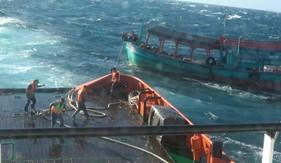 Tàu CSB 9003 cứu nạn thành công 01 tàu trên vùng biển Tây Nam