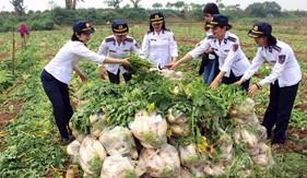 Ấm lòng nông dân Tráng Việt