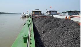 Tạm giữ 1.200 tấn than vi phạm trên khu vực biển Quảng Ninh