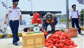 BTL Vùng Cảnh sát biển 1 bắt giữ 55kg pháo nổ trên biển Quảng Ninh
