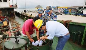 BTL Vùng Cảnh sát biển 3 liên tiếp bắt giữ tàu chở dầu bất hợp pháp