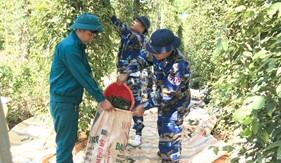 Cán bộ, chiến sĩ Bộ Tư lệnh Vùng Cảnh sát biển 3 giúp dân thu hoạch tiêu