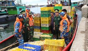 Bắt giữ phương tiện vận chuyển khoảng 35.000 con vịt giống bất hợp pháp
