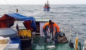 Tàu CSB 2008 cứu kéo thành công tàu cá bị gãy chân vịt trên vùng biển Hải Phòng