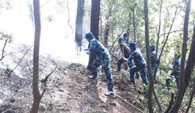 Bộ Tư lệnh Vùng Cảnh sát biển 1 tham gia chữa cháy rừng thông ở Hà Tĩnh