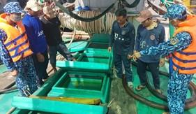 Cục Nghiệp vụ và Pháp luật Cảnh sát biển bắt giữ tàu vận chuyển 90 nghìn lít dầu DO trái phép