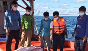 Đoàn Trinh sát số 2 bắt giữ tàu vận chuyển khoảng 70 nghìn lít dầu DO trái phép