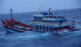 Tàu Cảnh sát biển 8002 vượt bão số 5 cứu ngư dân gặp nạn